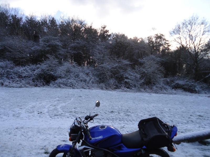 enfin l'hiver  Dsc02611