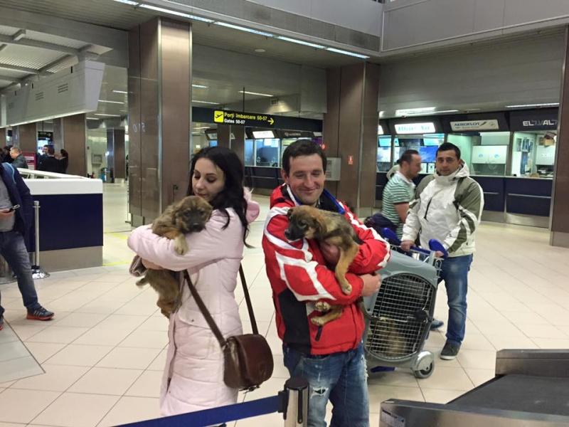 Arrivée par avion du 8 février - Christopher et Michel - Page 2 12669412