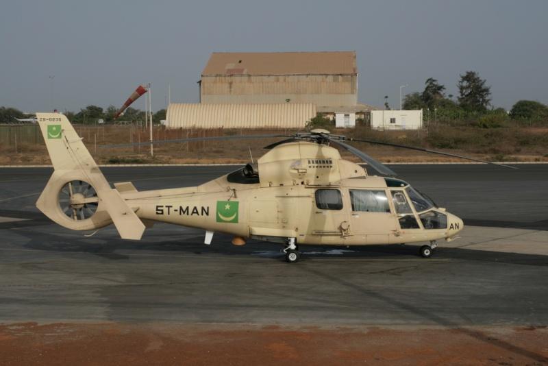 Armée Mauritanienne - Page 2 Dauphi11