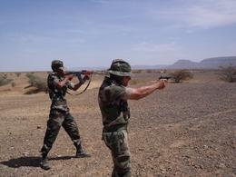 Armée Mauritanienne - Page 2 Exerci10