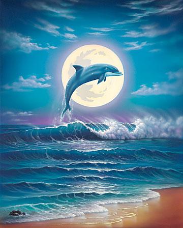 عشق البحار ......... فراقها  انتحار