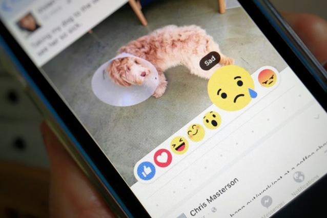 """Facebook, ecco come sarà realmente il pulsante """"Non mi piace""""   - Pagina 2 Facebo10"""