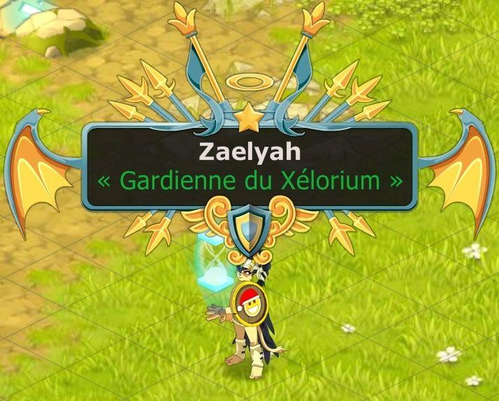 Excuse et demande d'intégration du petit chat Zaelyah ! Zaelya12