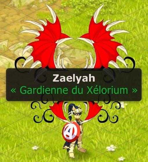Excuse et demande d'intégration du petit chat Zaelyah ! Zaelya13