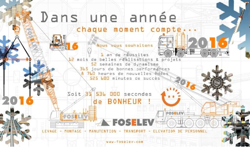 Les grues de FOSELEV (Goupe FOSELEV) (France) - Page 47 Voeux210