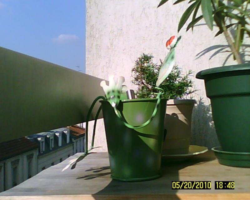 [BON PLAN] Caméra embarqué Sunp0011