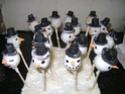 Cake pops 01310