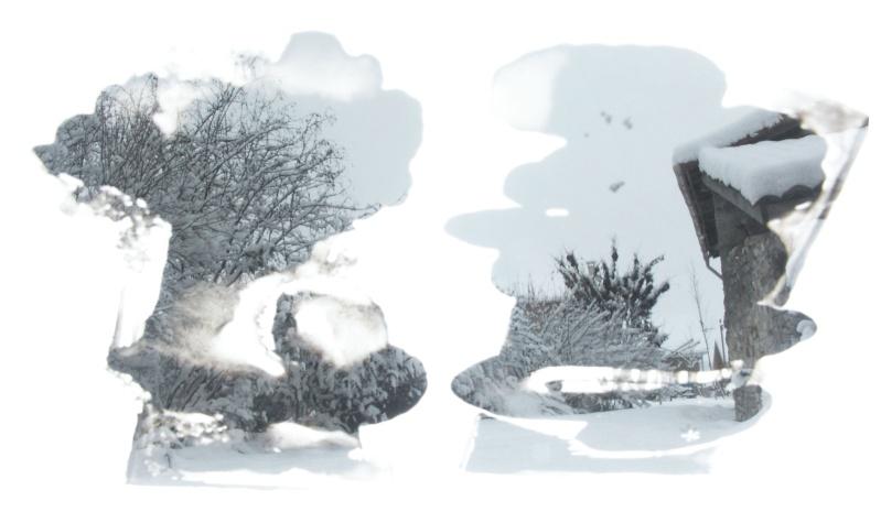Jean-Yves Amir, peintographies Neige_10