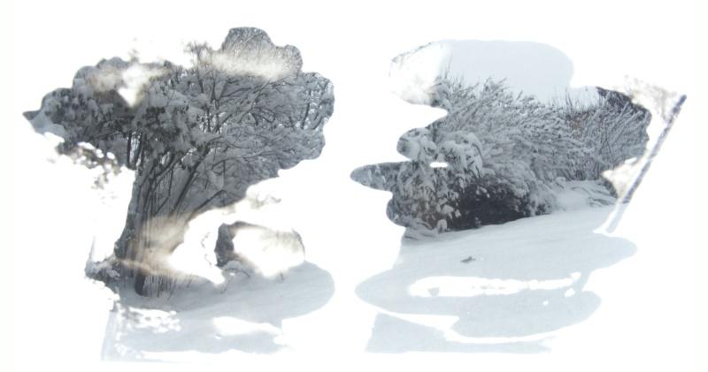 Jean-Yves Amir, peintographies Neige_11