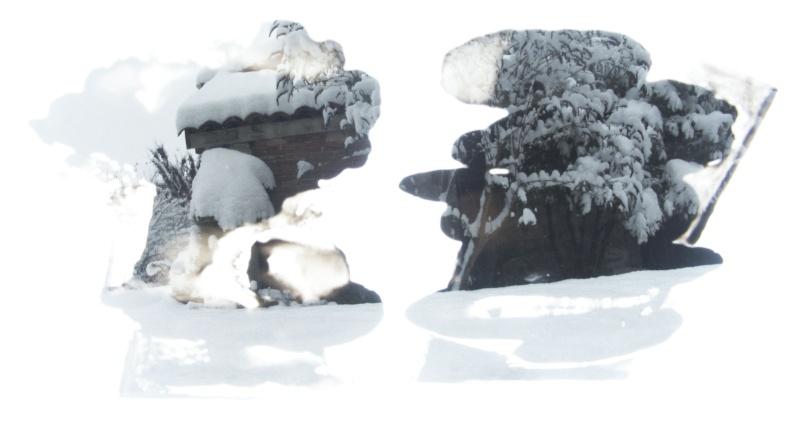 Jean-Yves Amir, peintographies Neige_12