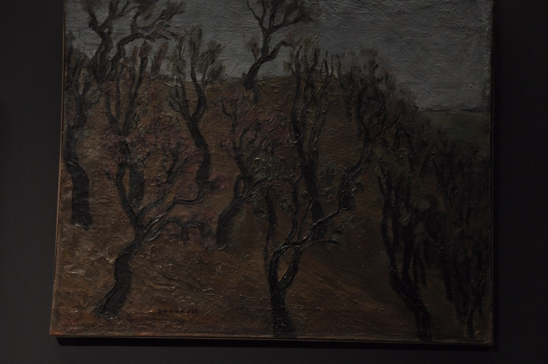 Aveyronnaise 2: Soulages, le musée de Rodez et les vitraux de Conques Soulag12
