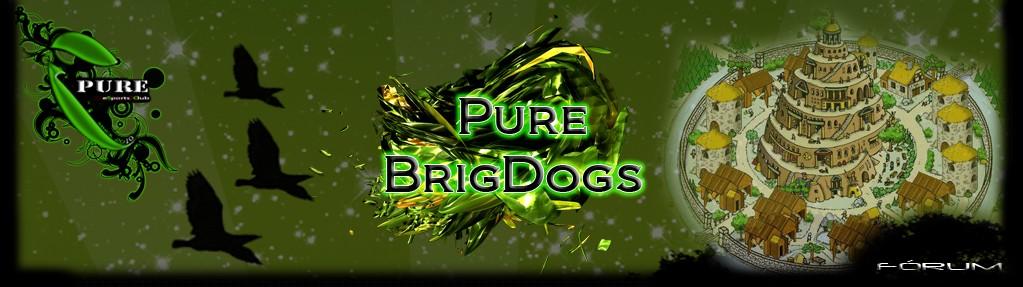 Pure BrigDogs Fórum - Portal Wasd10