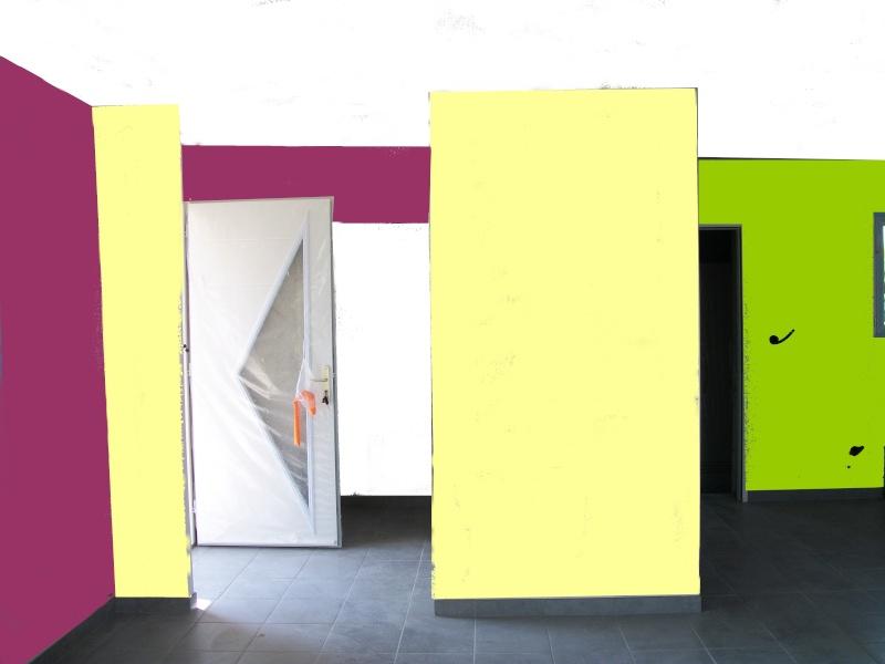 couleurs pour séjour + cuisine ouverte maison neuve 100_0116