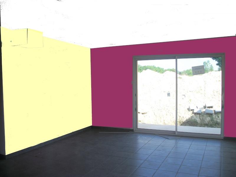 couleurs pour séjour + cuisine ouverte maison neuve 100_0118