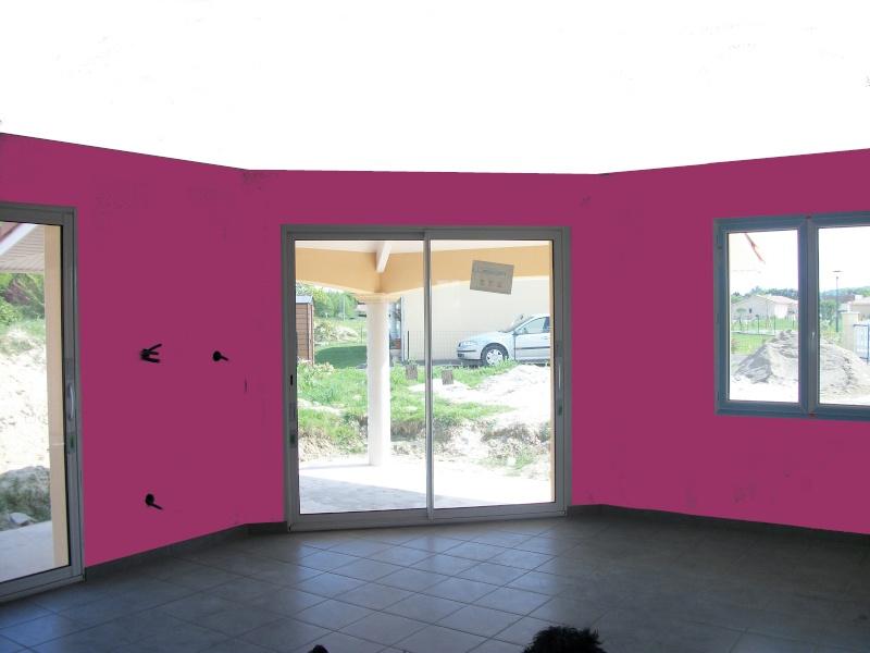 couleurs pour séjour + cuisine ouverte maison neuve 100_0119