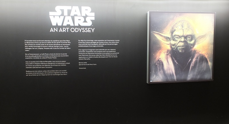 Star Wars An Art Odyssey - exhibition Marseille France 002a_s10