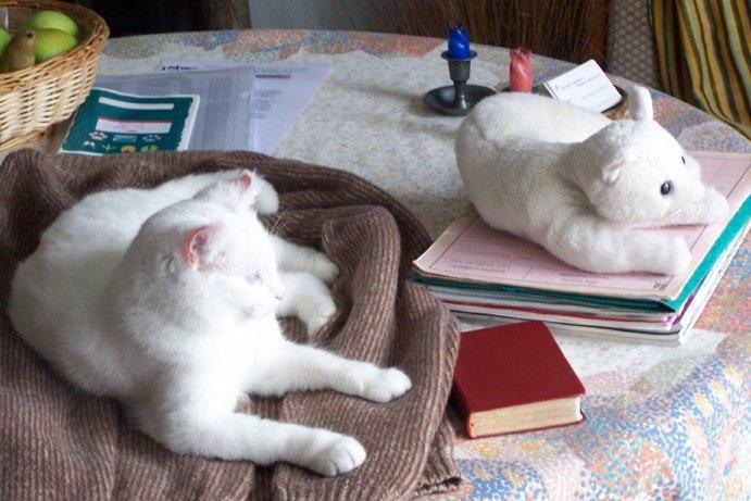 Ohé, petite chatte sourde - Page 2 08111810