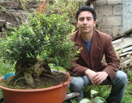 Bonsai from the Andes in South America Ecuador 11_sep16