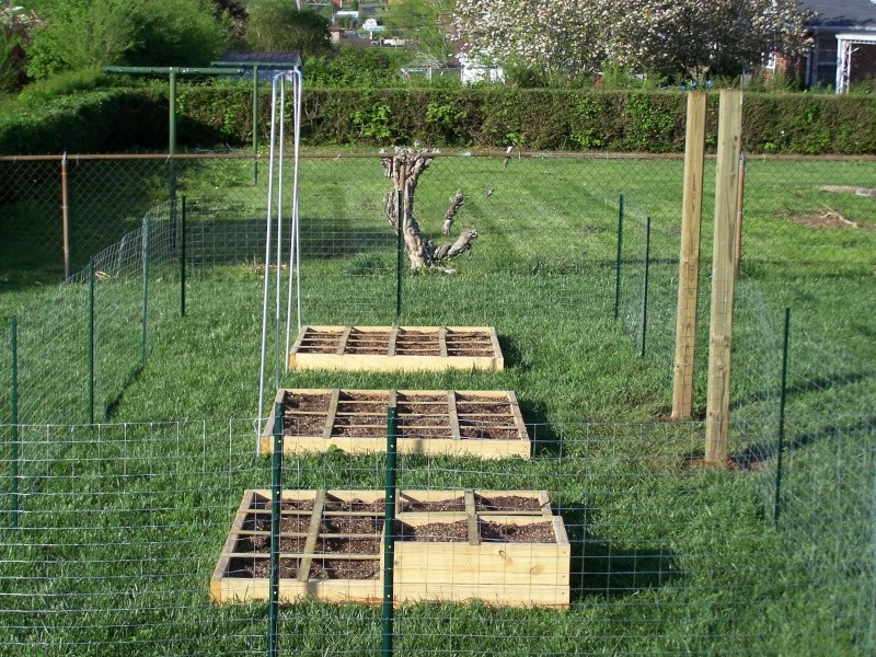 Fencing in a garden 100_7210