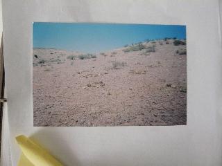 PAOLA HARRIS'S REME BACA UFO TRANSCRIPT - PERMISSION TO POST TRANSCRIPT WORLDWIDE! P1110913