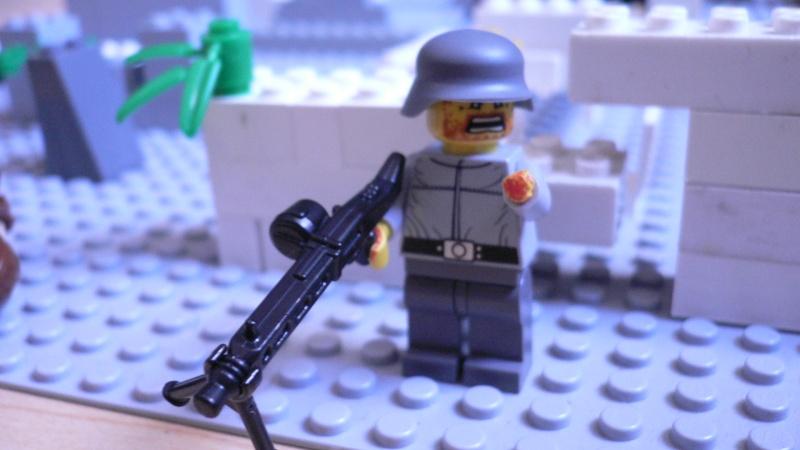 Les meilleurs sites pour les accessoires LEGO P1060715
