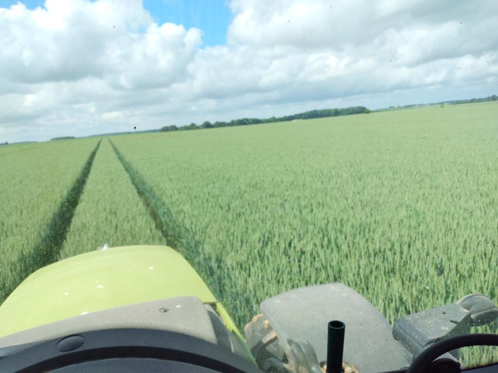 suivi blé 2021 - Page 2 Sacram10