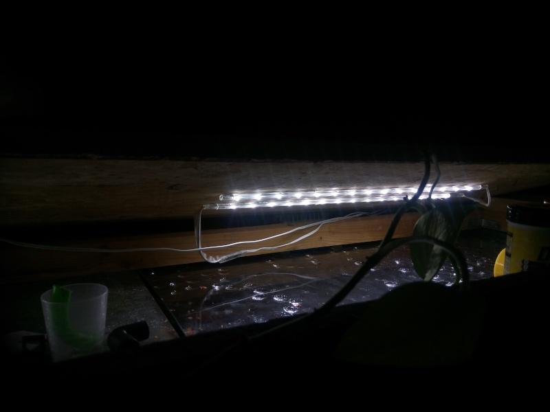 Mon éclairage leds  Dsc_0119