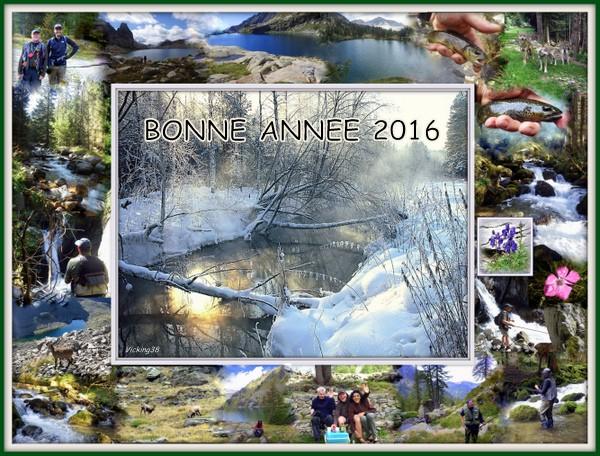 Meilleurs voeux 2016  Bonnes11