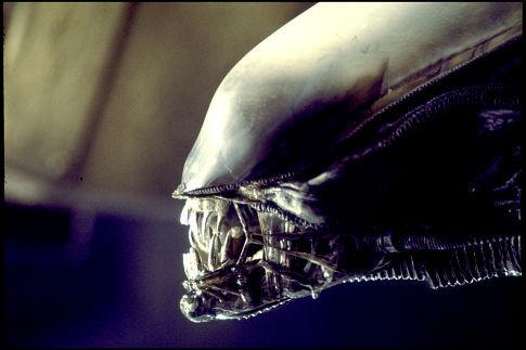 Alien Prequel. Alien_10