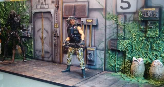 Diorama Alien&Predator. Dsc04311