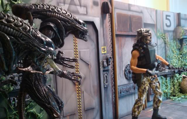Diorama Alien&Predator. Dsc04312