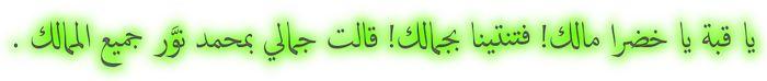 إحتفالية سيدى إبراهيم الدسوقى 2110