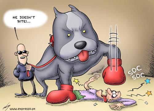 Dog Cartoons Danger10
