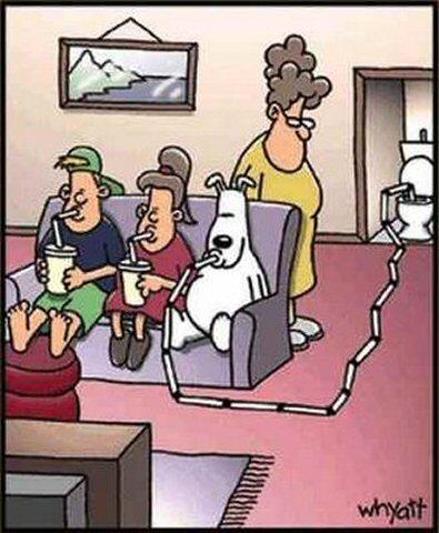 Dog Cartoons Funny-10