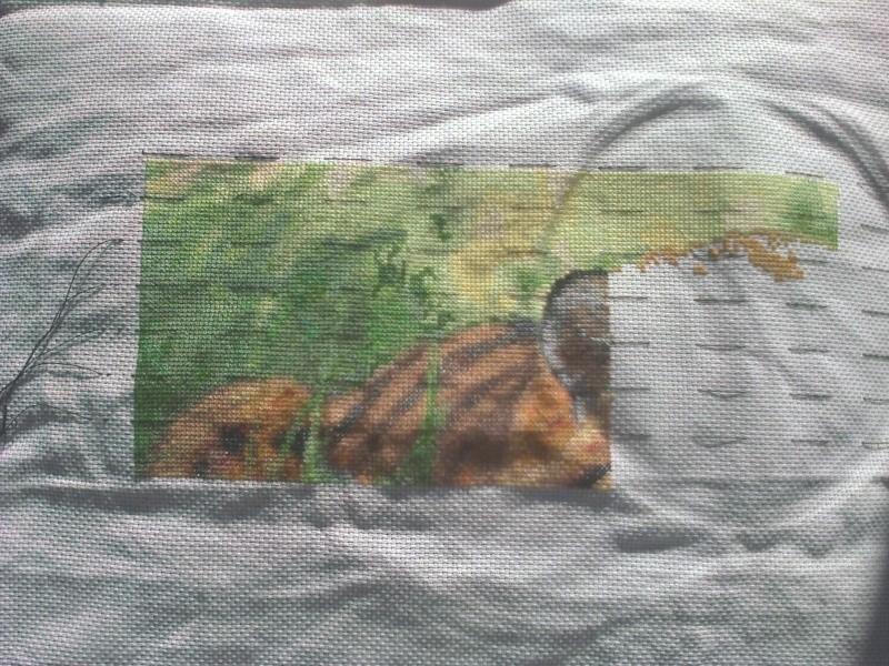 Artecy- tigre du Bengale Photo033