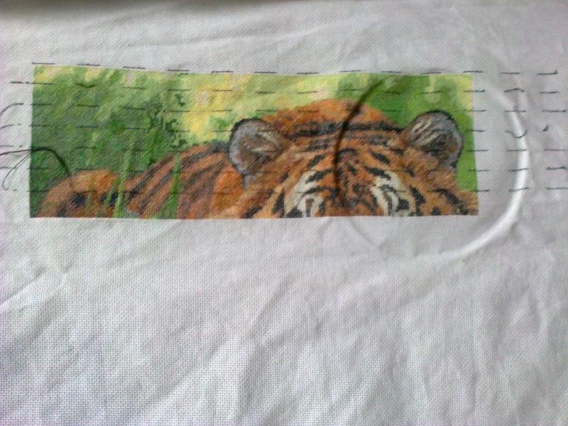 Artecy- tigre du Bengale Photo036