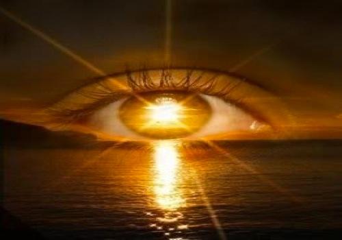 J'ai trouvé le soleil Vison_10