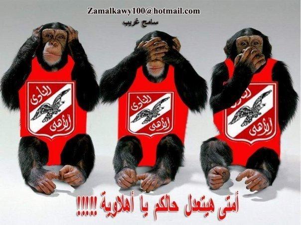 تريقة علي الاهلي 2010 N5607310
