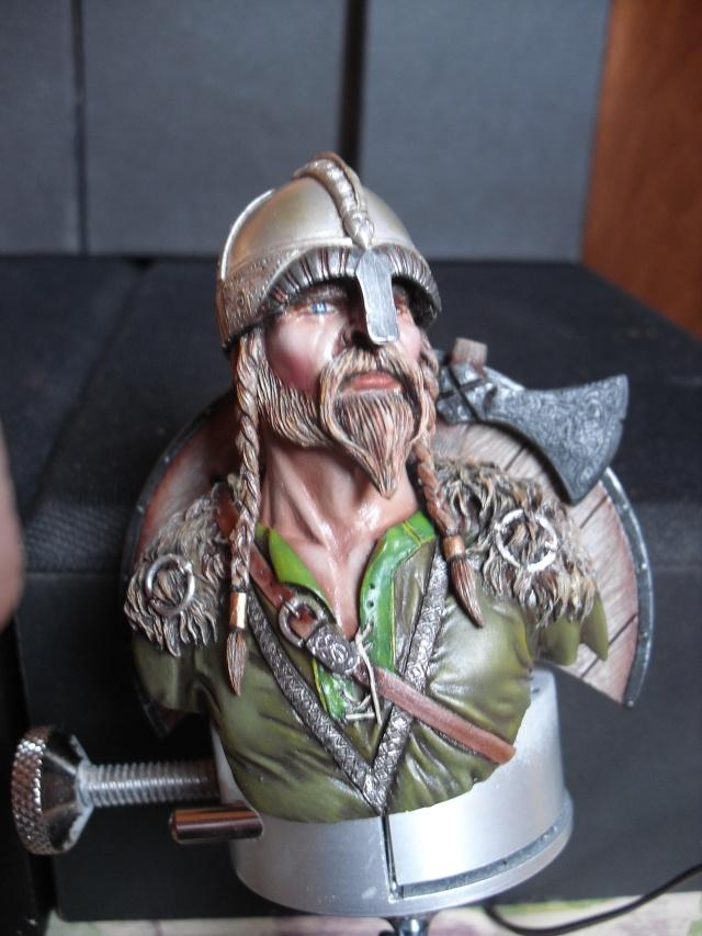 Viking terminé Dsci3352