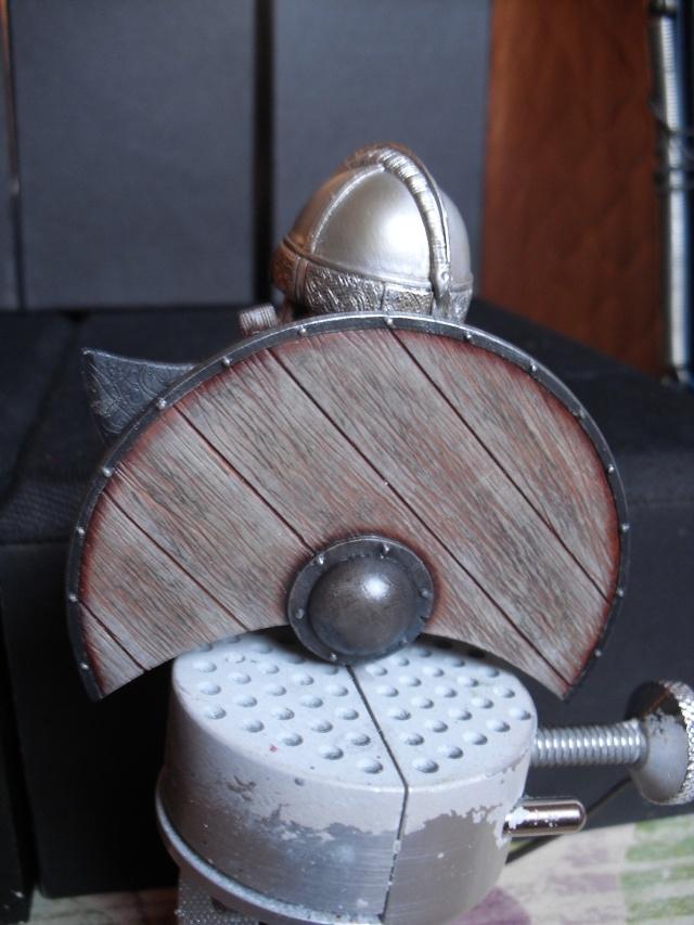 Viking terminé Dsci3353