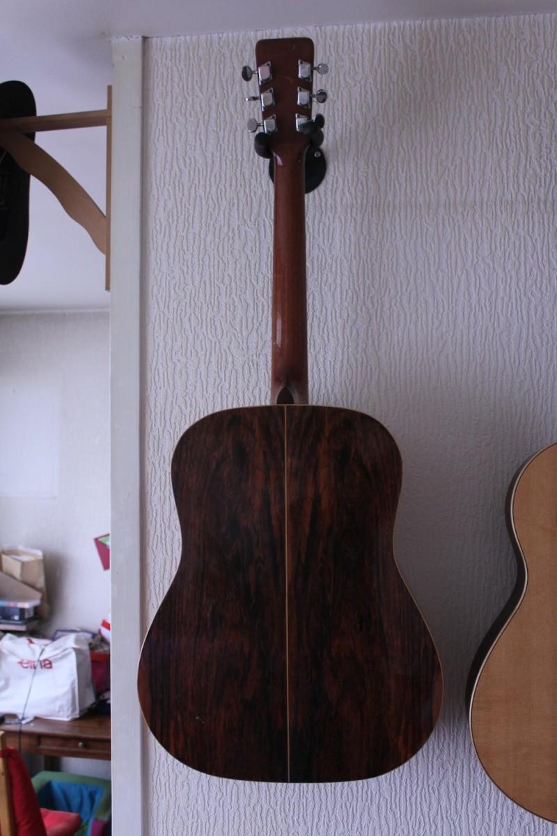 Giannini Guitars (Brazil) Back10