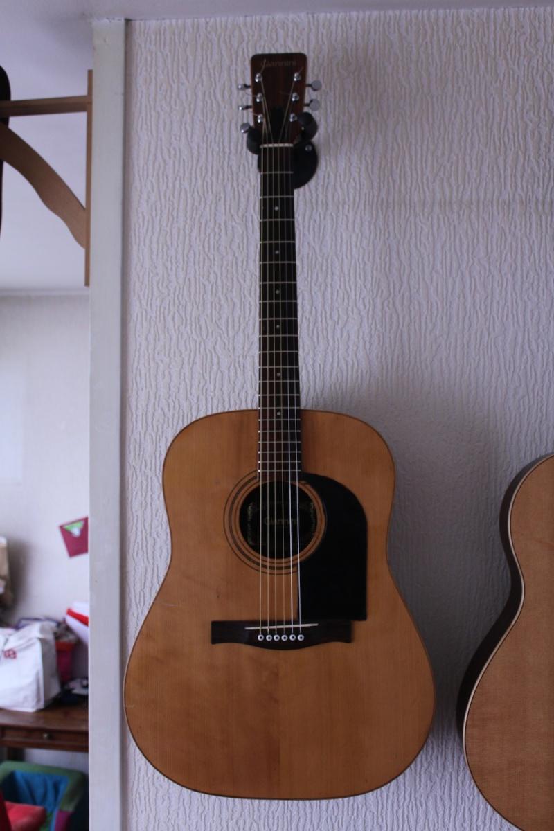 Giannini Guitars (Brazil) Front10