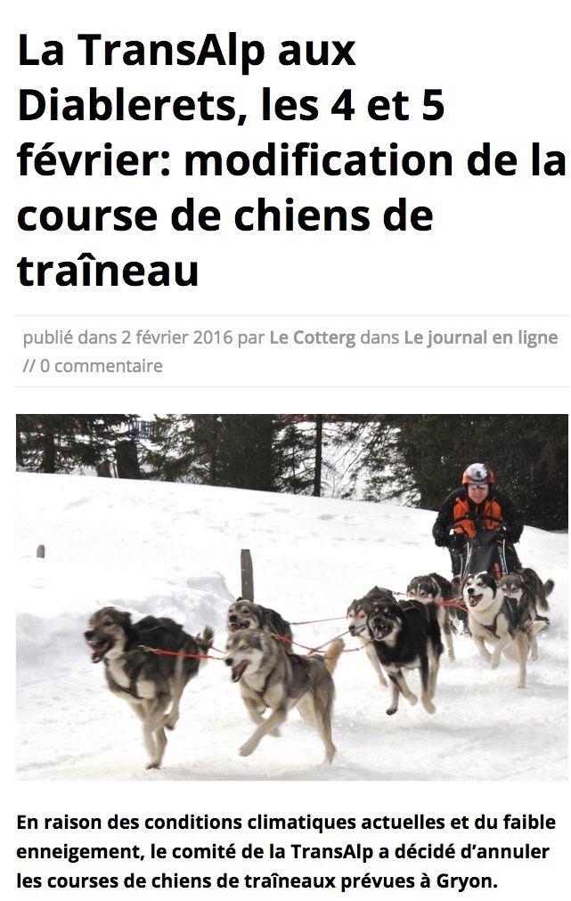 Course internationale de traîneaux à Chiens - Les Mosses - Suisse Gryon_11