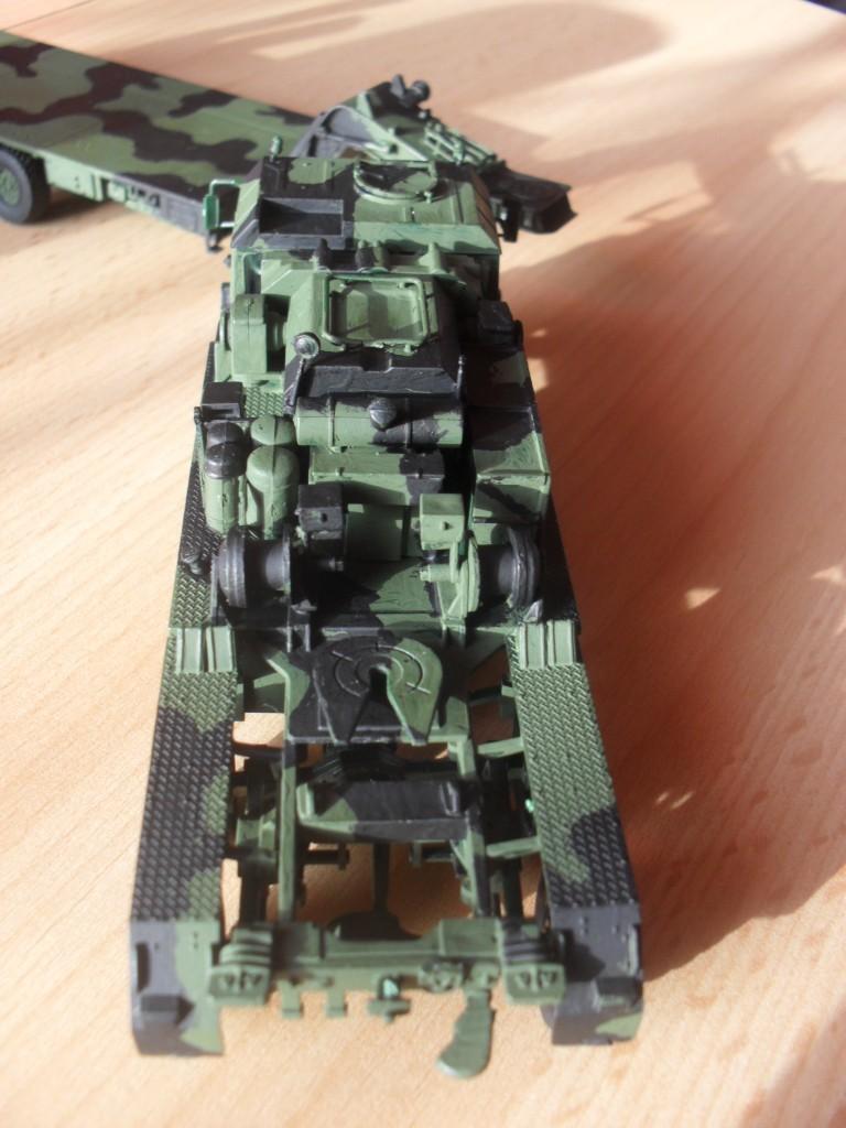 Tobi´s SLT 50-3 Elefant + Panzerhaubitze 2000 Sam_1021