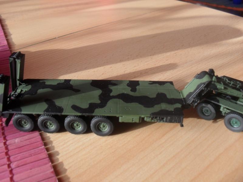 Tobi´s SLT 50-3 Elefant + Panzerhaubitze 2000 Sam_1022