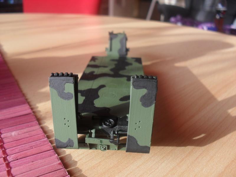 Tobi´s SLT 50-3 Elefant + Panzerhaubitze 2000 Sam_1023