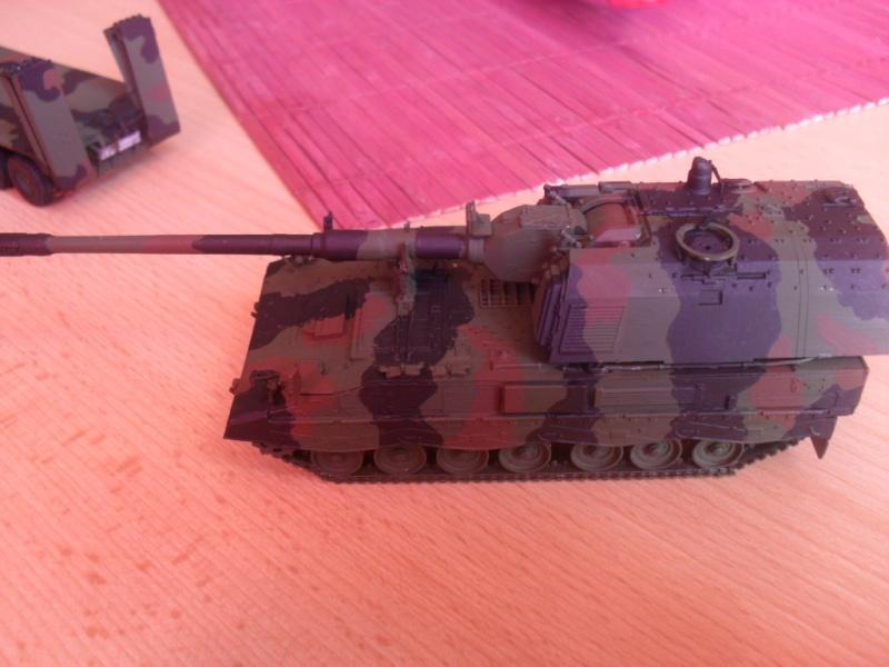 Tobi´s SLT 50-3 Elefant + Panzerhaubitze 2000 - Seite 2 Sam_1050