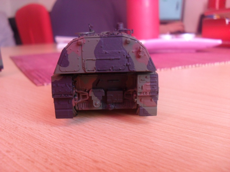 Tobi´s SLT 50-3 Elefant + Panzerhaubitze 2000 - Seite 2 Sam_1051