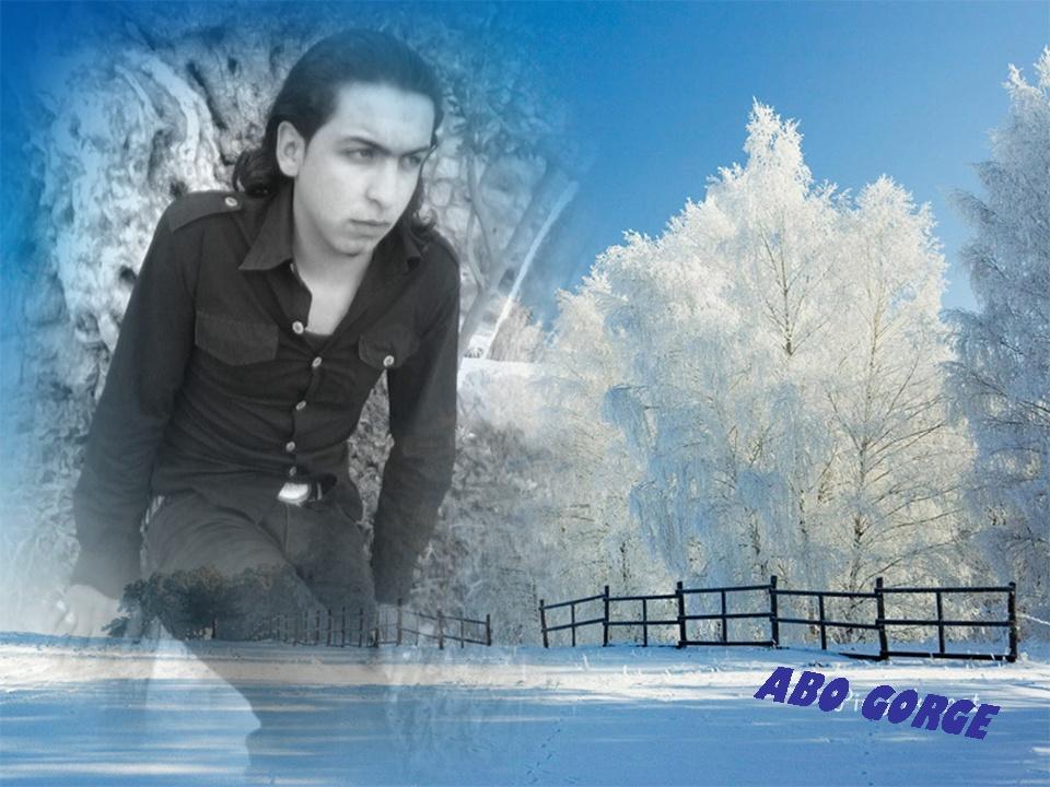 www.abogorge.com