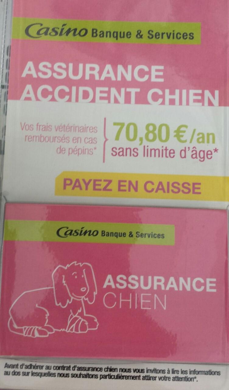 Assurance santé chiens - chat - Page 5 2016-010